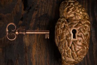 Как быстро развить память и внимание? Ответы знают в центре «Орфей»